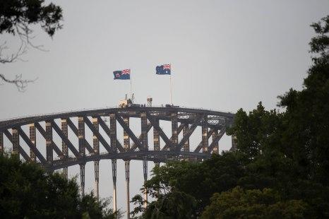 Harbour Bridge depuis le Royal Botanical Garden, Sydney