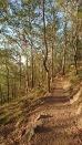 Mount Gravatt, un des sentiers de randonnée partant du sommet