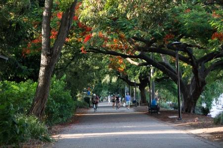 South Bank Parklands, Brisbane