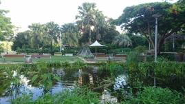 Plan d'eau décoratif, South Bank Parklands, Brisbane