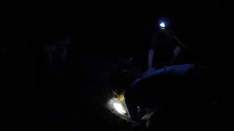 Les chercheurs en train d'ouvrir le nid après l'éclosion des tortues - Mon Repos Turtle Centre