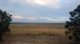 Les plaines au nord de Canberra