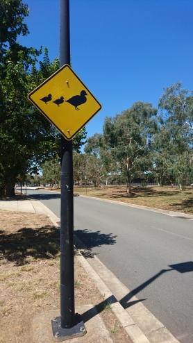 Panneau australien emblématique, utilisé pour tous types d'animaux, Canberra