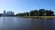 Énième session d'aviron sur la Yarra River, Melbourne