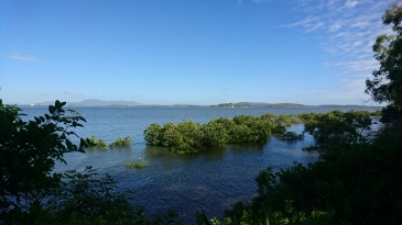 Nord de l'île, Quoin Island
