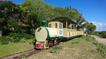 Oui, il y a un petit train. Il sert sûrement à emmener les clients fortunés du bateau au resort, soit moins de 500m plus loin