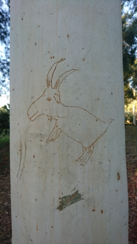 Un petit souvenir que j'ai laissé à la ferme. J'aurais pu faire des dessins dans Lascaux ! Murrnong, Violet Town