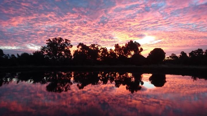 Coucher de soleil sur le principal réservoir d'eau de la ferme, qui sert aussi de piscine. Murrnong, Violet Town