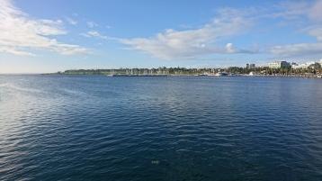 Front de mer, Geelong. On voit même une énorme méduse dans l'eau