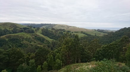 Qui a dit que l'Australie était plate ? Great Otway National Park