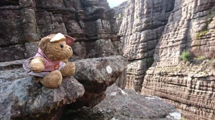 Super-doudou oublié en haut du Grand Canyon, ou mis là pour surveiller les randonneurs ? Grampians National Park
