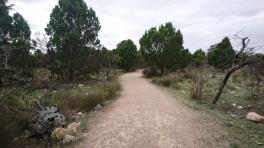 Un zoo parfaitement intégré dans son environnement, le bush est encore là. Monarto zoo