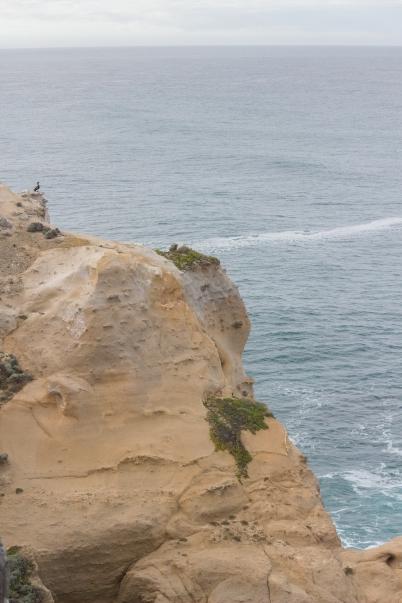 Non finalement c'est un peu haut... The Arch, Great Ocean Road