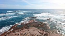 Sur le sable et les rochers, des lions de mer et des otaries font les loques. Point Labbatt