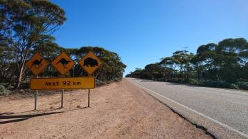Est du Nullarbor, South Australia