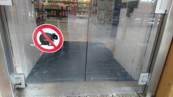 Quokkas interdits dans le supermarché, Rottnest Island