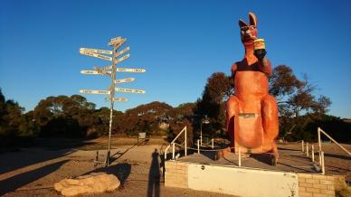 Deux symboles de l'Australie à la frontière entre les Etats, le kangourou et la Vegemite. SA/WA border village