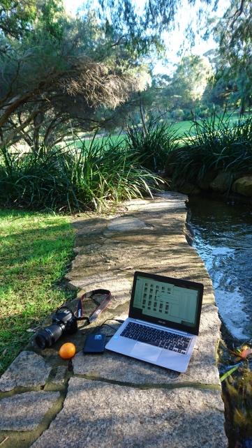 Mon meilleur bureau jusqu'à présent, Kings Park, Perth