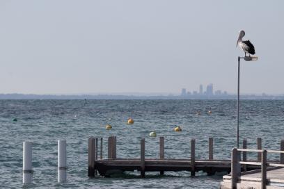 On surveille Perth de loin depuis Rottnest Island