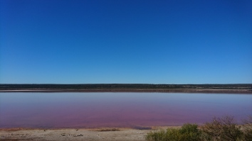 Pink Lake, Kalbarri National Park