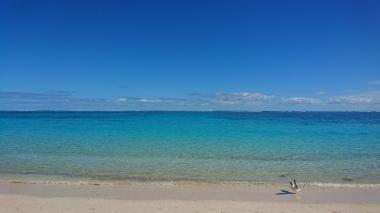 Turquoise Bay, Cape Range National Park. On aperçoit le récif sous l'eau.