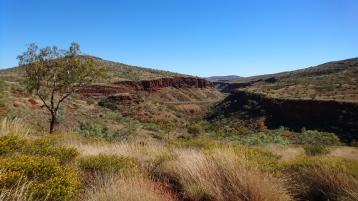 Au milieu de la gorge, la voie express traversant le Pilbara. Albert Tognolini lookout