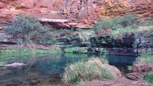 Circular Pool, Dales Gorge, Karijini National Park