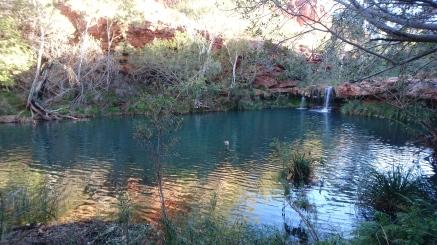 Fern Pool, Dales Gorge, Karijini National Park
