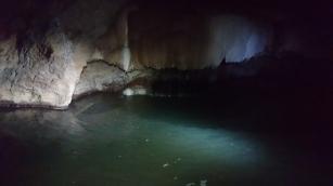 Bien caché dans l'eau à gauche de la fine cascade mais bien présent, un crocodile de Johnston, Crocodylus johnstoni, Tunnel Creek, WA
