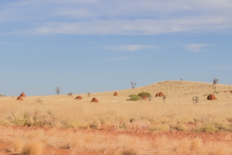 Dans le Pilbara, WA