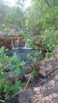 Tjaetaba Falls, Litchfield National Park