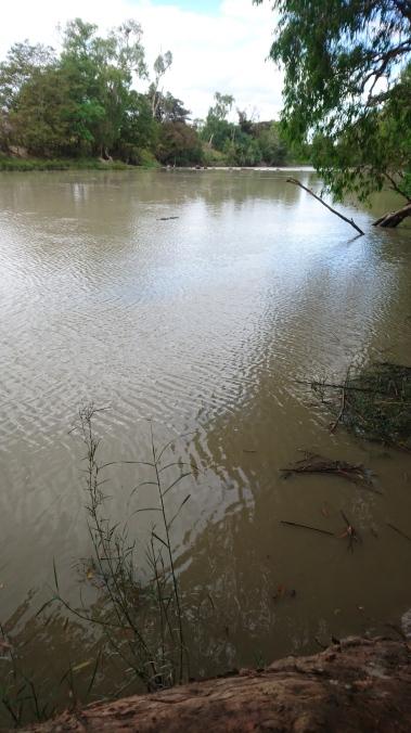 Et au milieu, flotte un croco. East Alligator River, Kakadu National Park