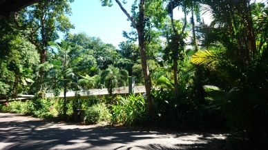 Rainforest retreat, pas le pire endroit du monde pour passer la nuit. Daintree Rainforest