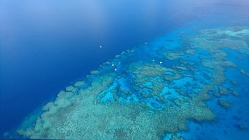 Récifs de la Grande Barrière de Corail