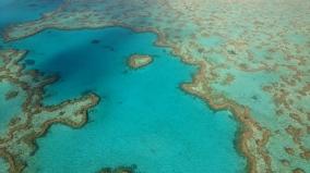 Heart Reef, en forme de coeur ; probablement le récif le plus connu de la Grande Barrière de Corail