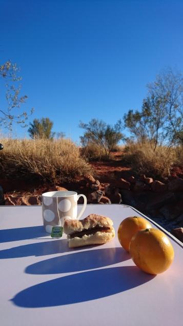 Je voulais me faire un thé au milieu du désert. On ne dirait pas le désert, mais on dirait bien un thé ! Kings Creek Resort