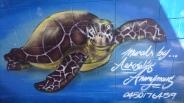 Street art, Airlie Beach