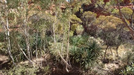 Garden of Eden, Kings Canyon National Park