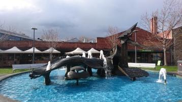 Salamanca Square, Hobart, Tas