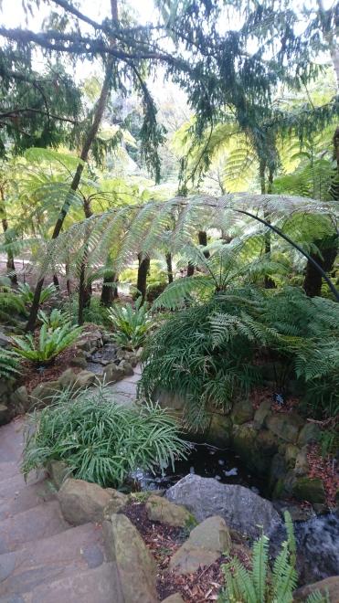 Royal Tasmanian Botanic Gardens, Hobart, Tas