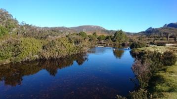 Ronny Creek, Cradle Mountain Lake St Clair National Park