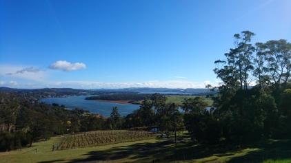 La Tamar River depuis Brady's lookout, Tasmania