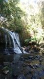 Lillydale Falls, Tasmania